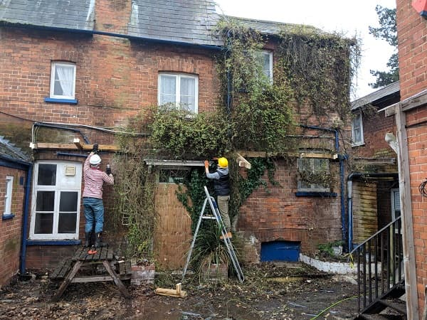 Team pulling down the ivy from the side of the pub